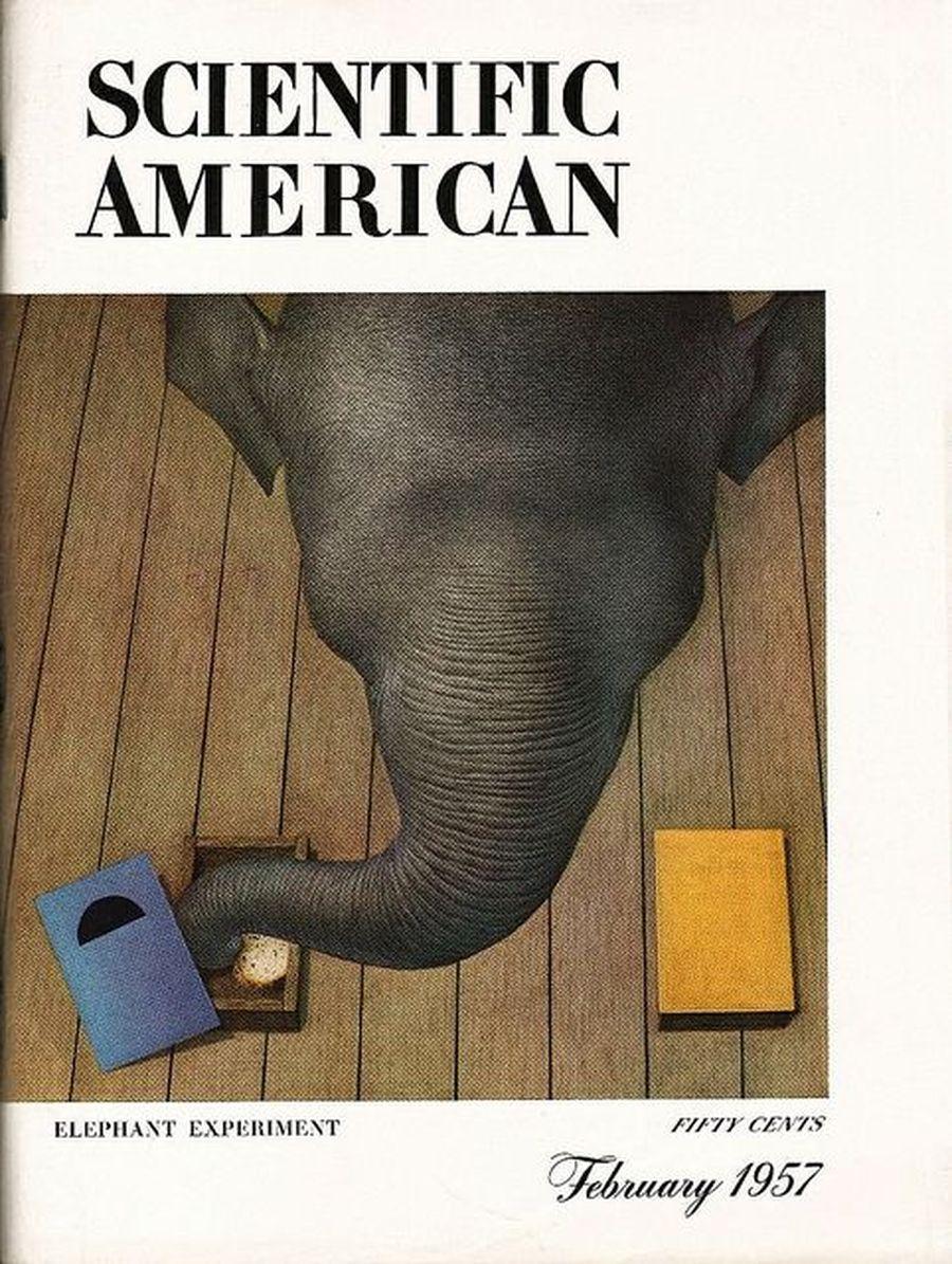 Scientific American — старейший научно-популярный журнал США, выходящий с 1845 года